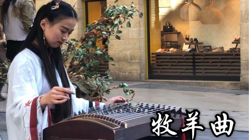 古箏 Guzheng Cover《牧羊曲 Sheep Tending Song》 日出嵩山坳,晨驚鳥飛絕 Chinese Musical Instruments
