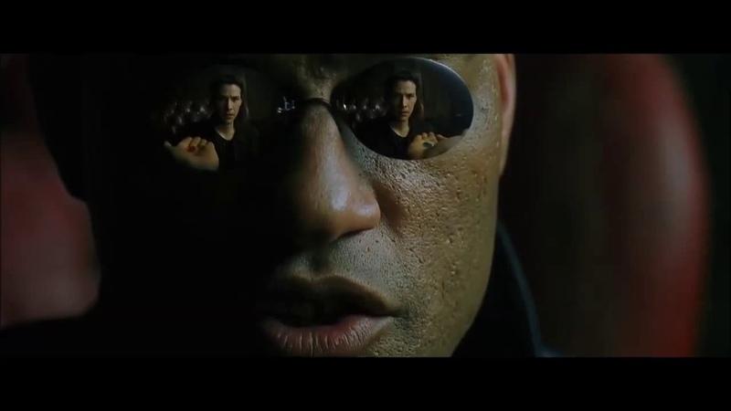 Монолог Морфеуса Нео выбирает таблетку Матрица 1999