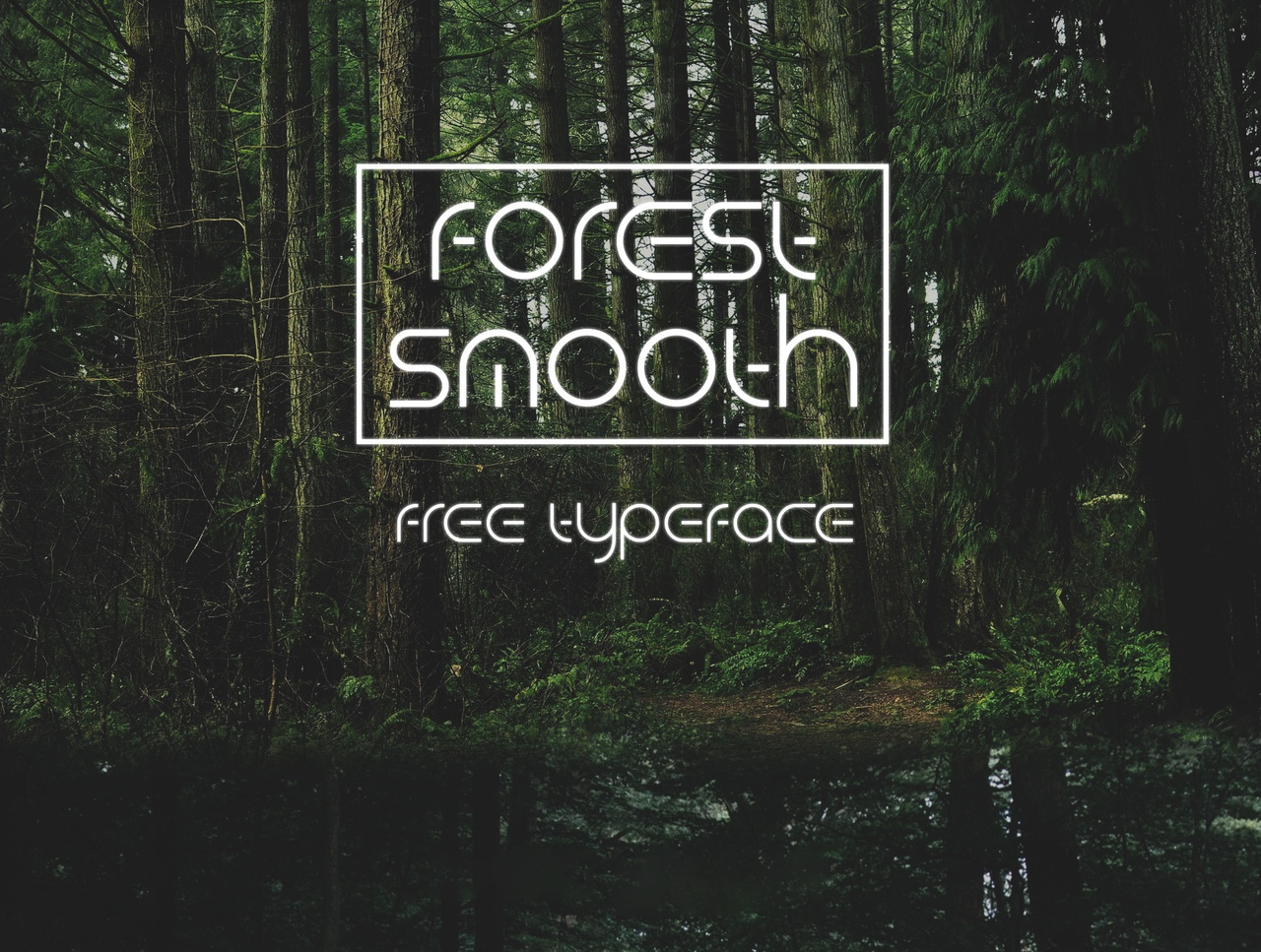 Шрифт - Forest Smooth