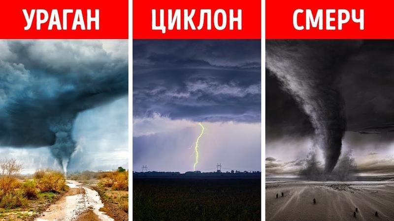 Ураган смерч циклон в чем разница