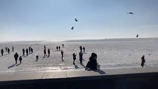 LIVE Бердянск Несмотря на запрет бердянцы рискнули и вышли на лёд