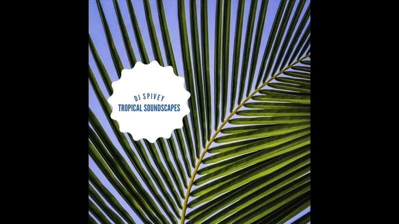 Tropical Soundscapes (A Soulful House Mix) by DJ Spivey