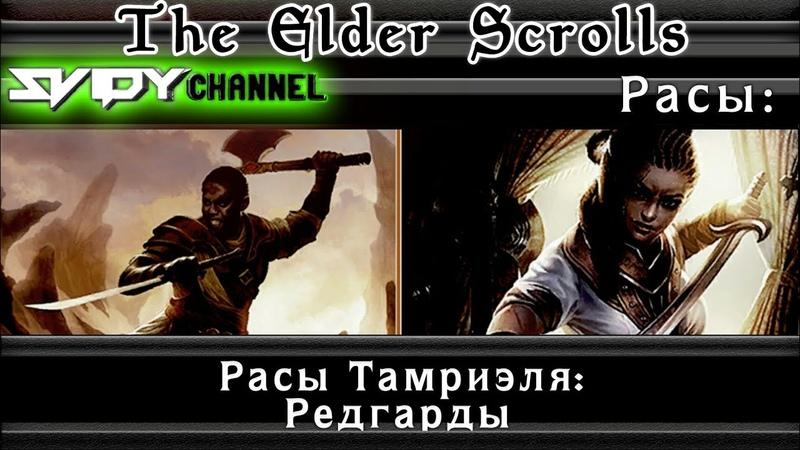 The Elder Scrolls Расы Тамриэля Редгарды Лор