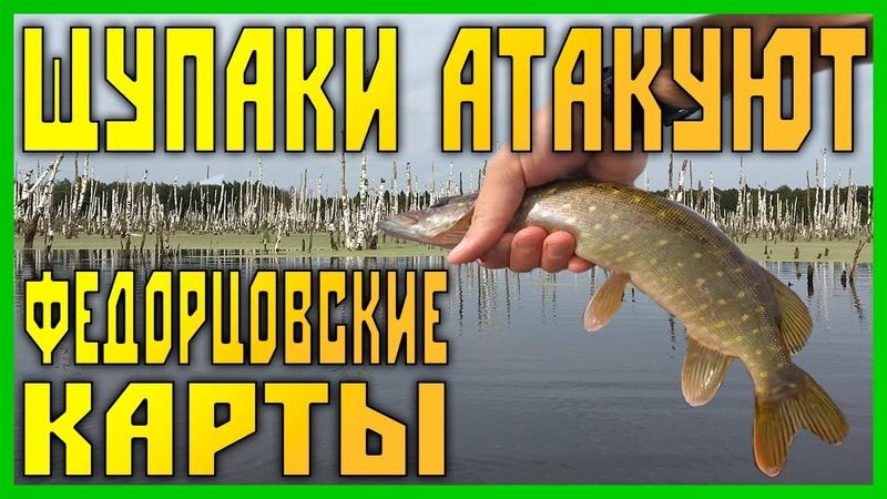 Щупаки атакуют Ловля щуки на спиннинг с лодки на торфяных картах Кубринск Федорцово рыбалка огонь