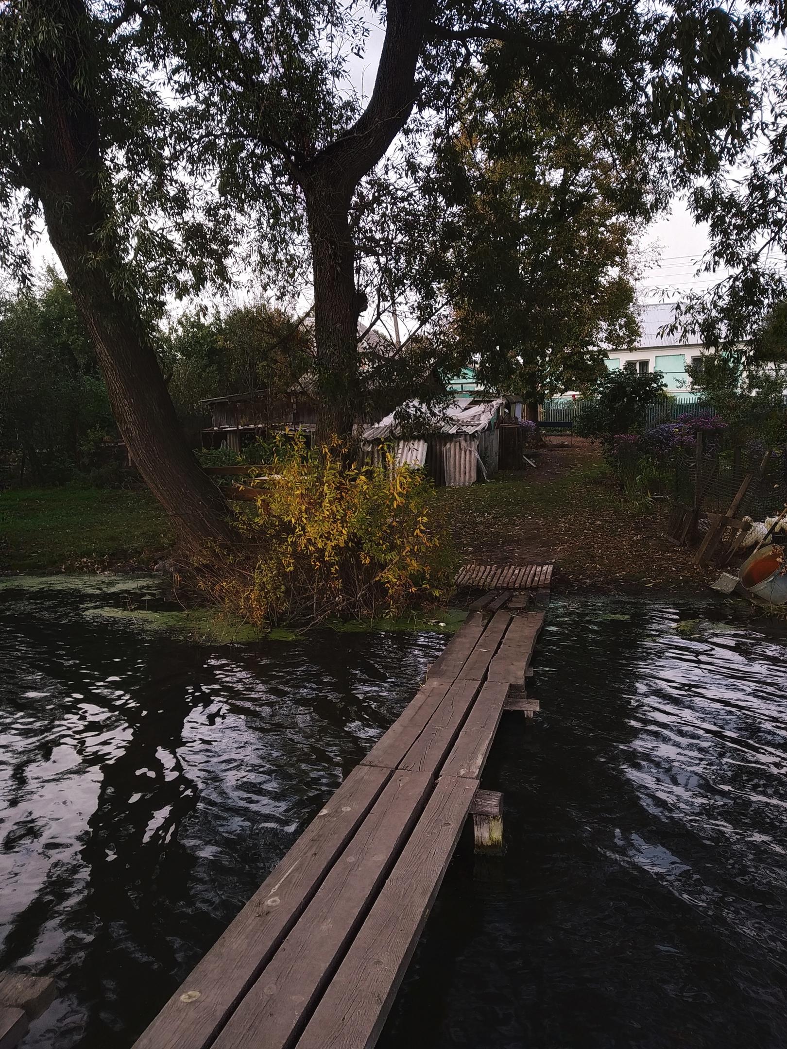 Щигры, Курская область