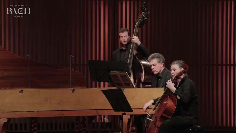 1061a J. S. Bach - Concerto for 2 Harpsichords in C major, BWV 1061 - NBS, Francesco Corti, Siebe Henstra [AoB]