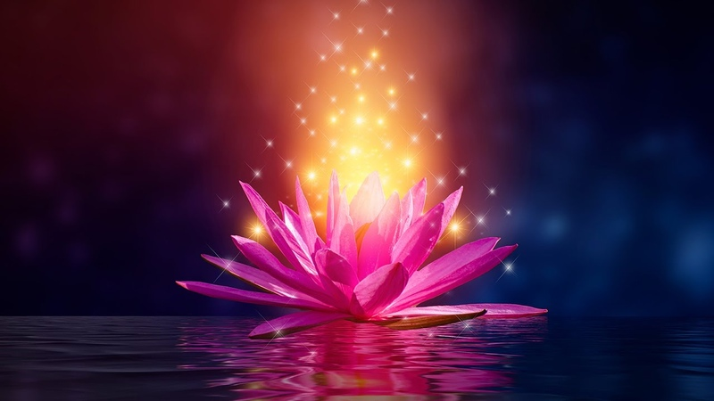 Manifest Miracles Raise Your Vibration Elevate Happiness Frequency Serotonin Levels