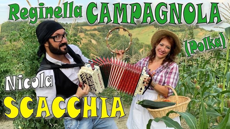 REGINELLA CAMPAGNOLA (polka) NICOLA SCACCHIA e la TECNICA TRADIZIONALE DELLORGANETTO dubbotte