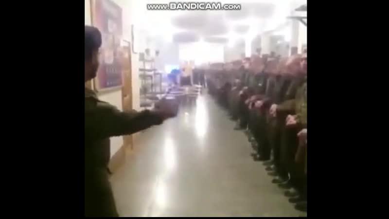 Мага обучает гойских свиней танцам