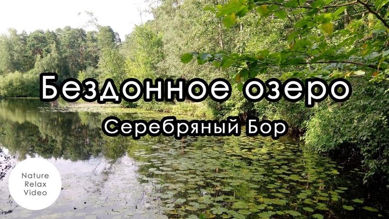 Бездонное озеро Серебряный Бор Nature relax version Август 2020 серияnaturerelax