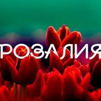 Коляски, открытка с именем розалия