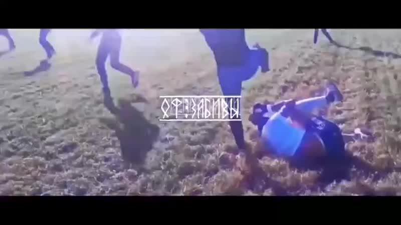 ОФ ЗАБИВЫ 360p