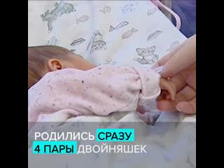 В московской больнице родились сразу четыре пары двойняшек  Москва 24