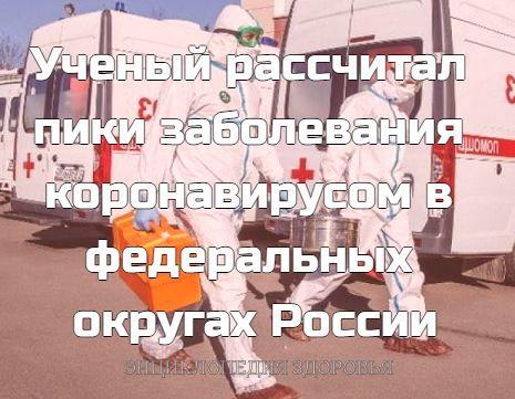 Ученый рассчитал пики заболевания коронавирусом в федеральных округах России
