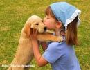 Я люблю собак.Всегда можно понять,о чем собака думает.У нее есть четыре настроения:счастливое…