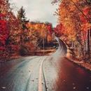 Дорога, которая раньше была почти непроходимой, теперь кажется легкой: все препятствия…
