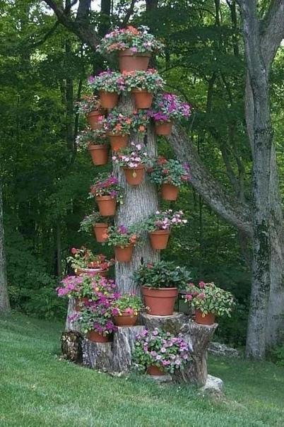 Клумба на дереве. Красиво смотрится
