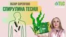 Обзор спирулины Techui от компании Total Life Changes