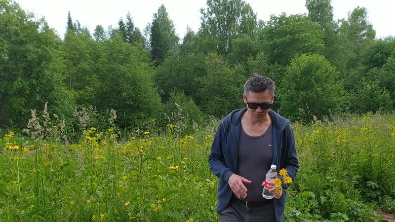 Миляхов в лесах Белогорья