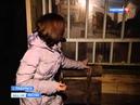 Жители Подольска боятся выходить на улицу из-за собак