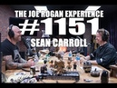 Joe Rogan Experience 1151 Sean Carroll