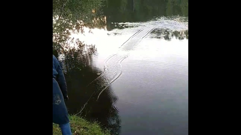 Покидали сегодня магнит... www.poryvaev.ru