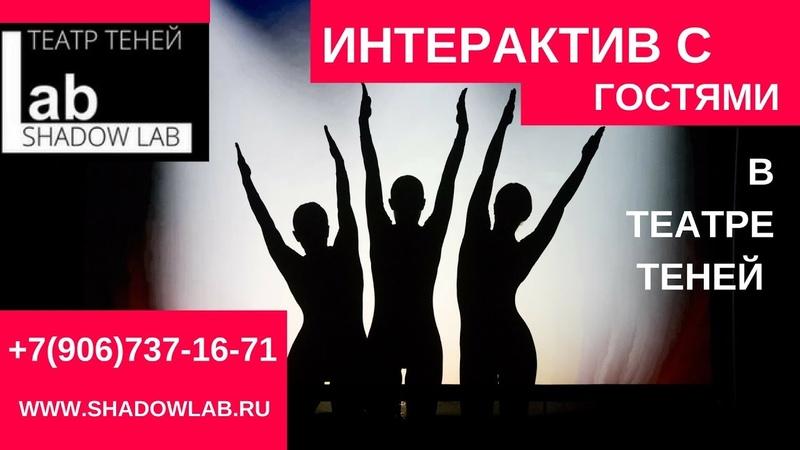 ТЕАТР ТЕНЕЙ Интерактив с гостями на мероприятии
