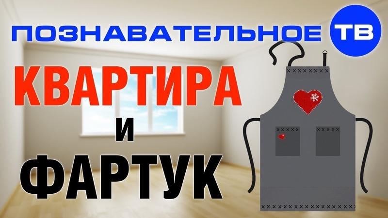 Как появилась КВАРТИРА и при чём здесь ФАРТУК (Познавательное ТВ, Артём Войтенков)