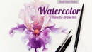 How to Draw Irises Watercolor Real time Video Part 1