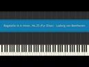 Bagatelle in A minor, No.25 (Fur Elise) - Ludwig van Beethoven (Piano Tutorial)