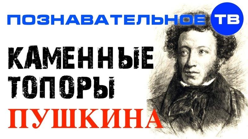 Каменные топоры Пушкина (Познавательное ТВ, Артём Войтенков)