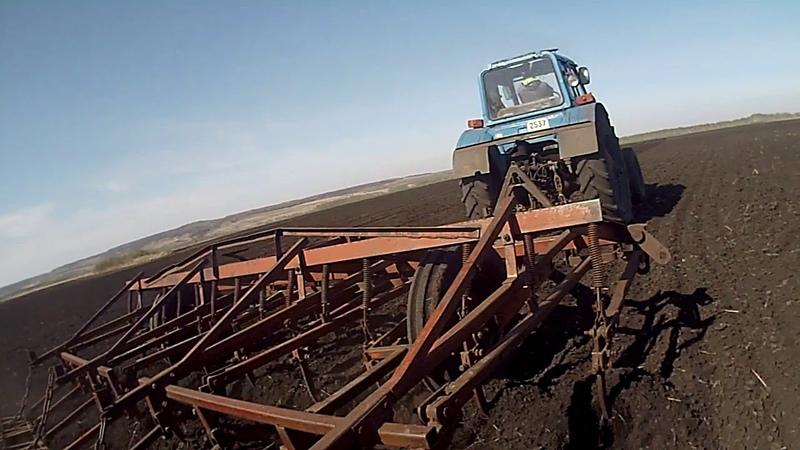 Посев яровой пшеницы 2018. Культивация, каткование