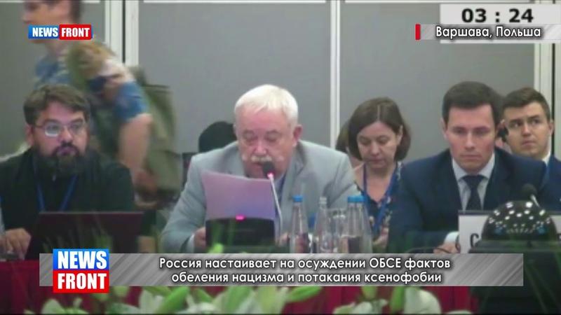Россия призвала ОБСЕ оценить попытки обеления нацизма в мире