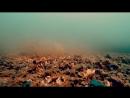 Рыбалка на Фидер Ловля Леща Осенью Прикормка и Подводная съёмка
