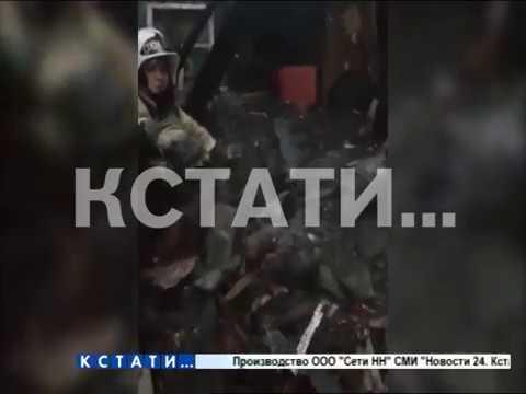 Ми-ми-мишная операция нижегородских пожарных - они спасли от огня щенячий выводок
