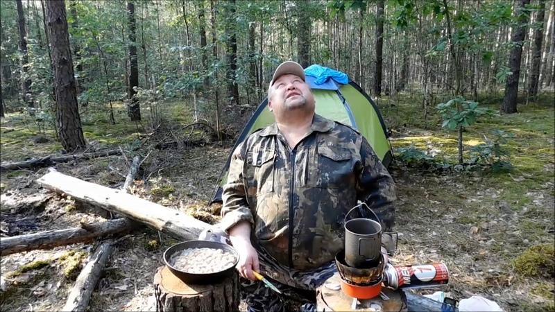 Одиночный поход в лес с ночевкой.Мозырь, Беларусь.