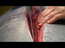 $11000 Tuna SUSHI SASHIMI Tokyo Tsukiji Fish Market JAPAN