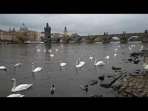 Moldau in Prague Prag Praga