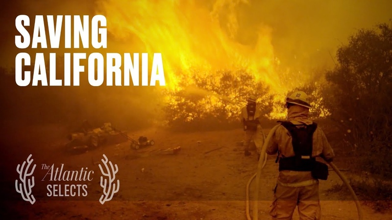 Fighting California's Wildfires Stunning Footage from the Front Lines