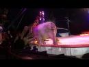 Падение слона в цирке Кроне (2018)