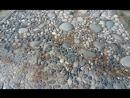 Лечебные камни в Андреевскому саду из Краснодарского края