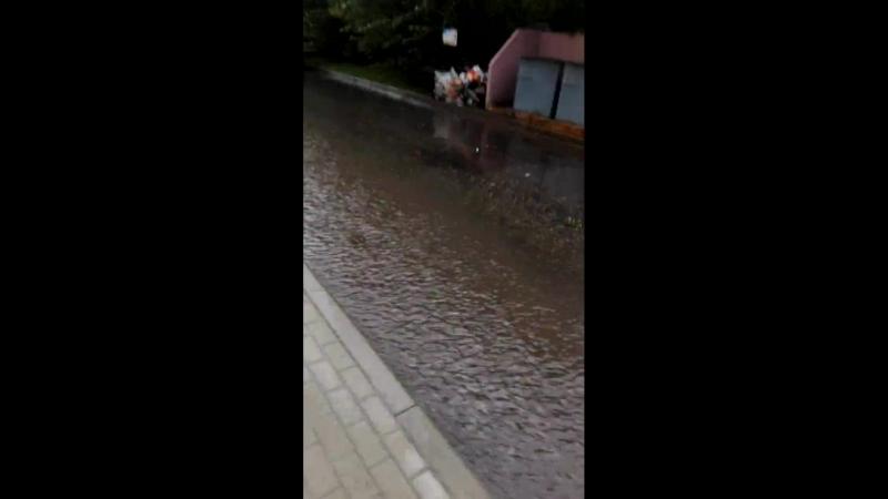 Воронеж после дождя 23.07.2018 [2]