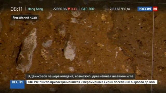 Новости на «Россия 24» • До сих пор острая на Алтае нашли швейную иглу, которой более 50 тысяч лет