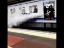 Anti Bomber Spray