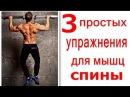 Как Накачать Спину Без Железа Тренировка спины 3 Простых Упражнения rfr yfrfxfnm cgbye tp tktpf nhtybhjdrf cgbys 3 ghjcn