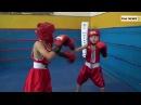 Клубні змагання з боксу ВПК Мужність 16 12 2017