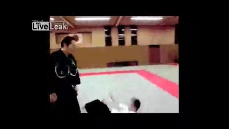 Прикольные картинки гифки боевые искусства айкидо 2410566