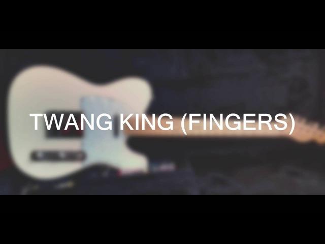Dimarzio Twang King vs Stock Pickup (neck)