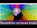 Прибор Тринити Часть 1 Елена Зеленская Мультичастотная синхронизаия Ритмы головного мозга.