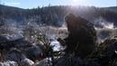 Сибирская оленина Выжить любой ценой